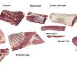 Styckningsschema lammkött